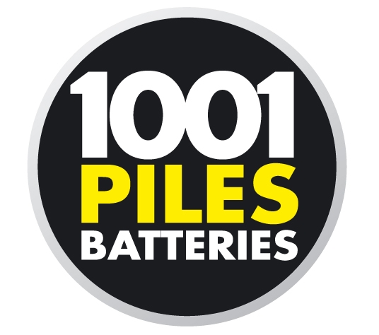 Franchise 1001 Piles Batteries